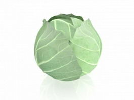 White cabbage 3d preview