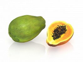 Papaya and cross section 3d preview