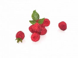 Red mulberry fruit 3d preview
