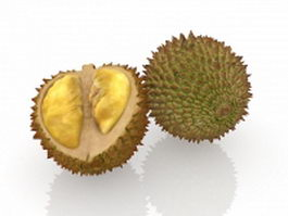 Durian fruit with spikes 3d preview