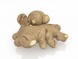 Fresh ginger rhizome 3d preview