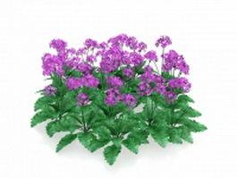Purple flowers plants 3d model preview
