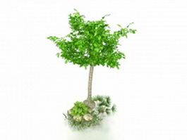 Small garden tree 3d preview