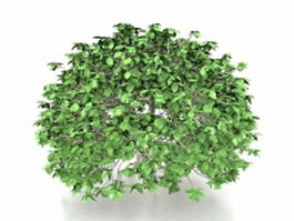 Topiary trees 3d preview