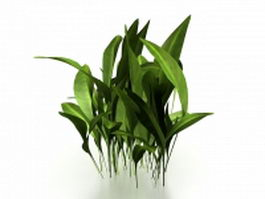 Broadleaf weeds plant 3d preview