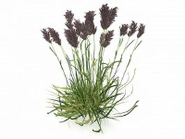 Wetland reed plants 3d preview