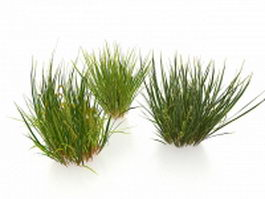 Winter grasses 3d preview