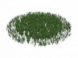 Lawn grasses plant 3d preview