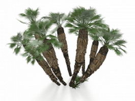 California palm trees 3d preview