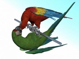Scarlet macaw and military macaw 3d preview