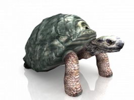Giant tortoise 3d preview