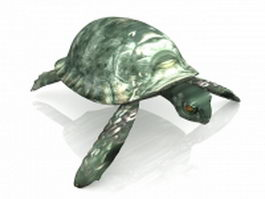 Green sea turtle 3d preview