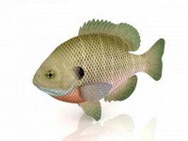 Bream fish 3d model preview