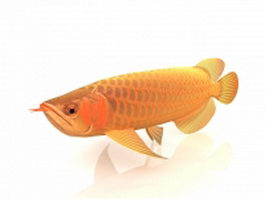 Golden Arowana fish 3d model preview