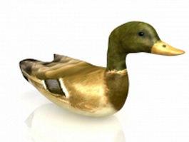Wild duck 3d model preview