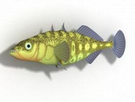 Stickleback fish 3d model preview