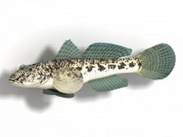 Round goby fish 3d model preview