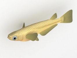 Medaka fish 3d model preview
