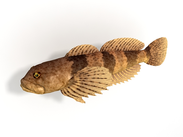 Slimy sculpin fish 3d rendering