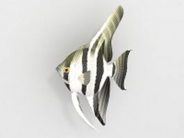 Freshwater angel fish 3d preview