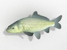 Water garden koi fish 3d model preview