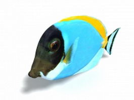 Blue angelfish 3d preview