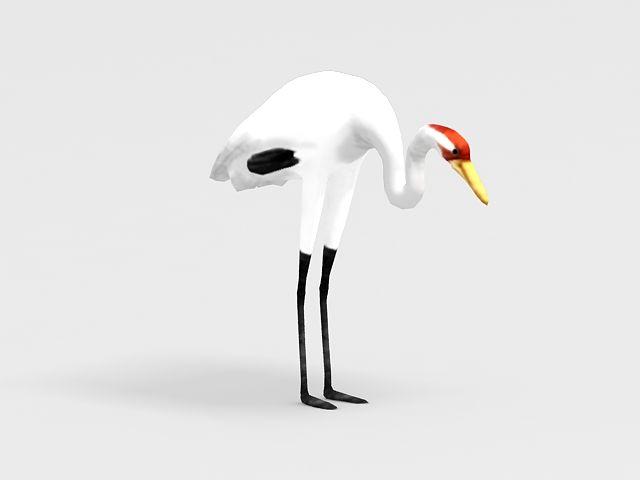 Red-crowned crane 3d rendering