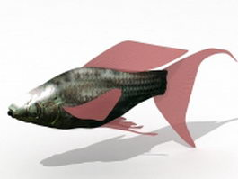 Molly fish 3d model preview