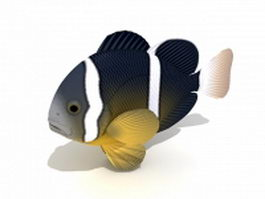 Anemonefish 3d preview