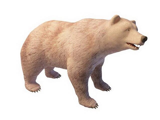 Polar bear 3d rendering