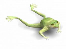 Green tree frog 3d model preview