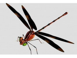 Black and red dragonfly 3d preview