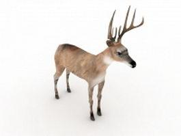 Reindeer 3d model preview