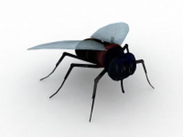Black fly 3d preview