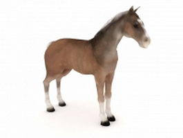 Colonial Spanish Horse 3d preview