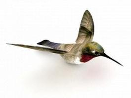 Hummingbird 3d preview
