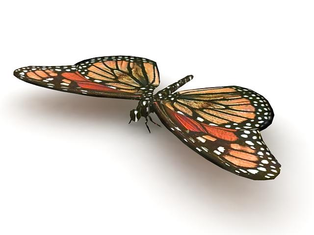 Monarch butterfly 3d rendering