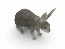Grey rabbit 3d model preview