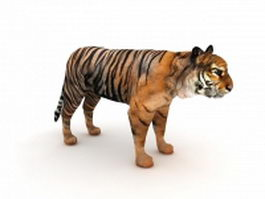 Indian tiger 3d model preview