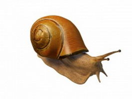 Land snail 3d preview