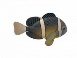 Clownfish anemonefish 3d model preview