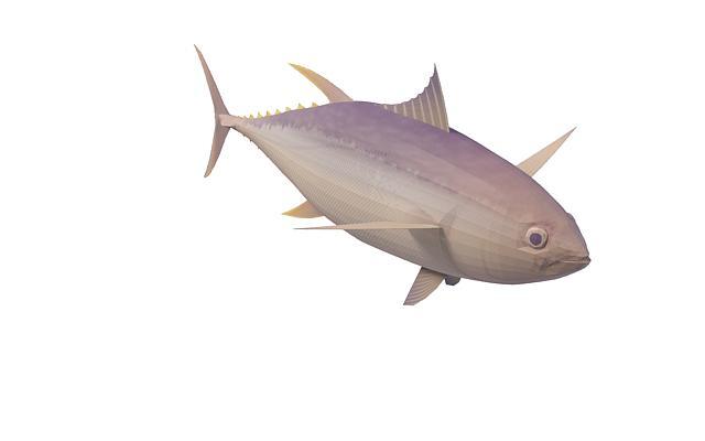 Yellowfin tuna 3d rendering