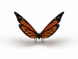 Australian painted lady butterfly 3d preview