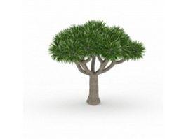 Desert palm tree 3d model preview