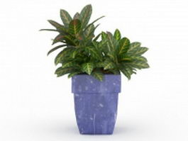 Large leaf house plant 3d preview