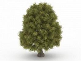 Bald cypress tree 3d model preview