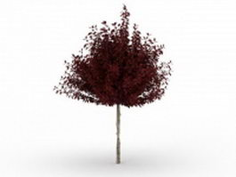 Red dwarf plum tree 3d model preview