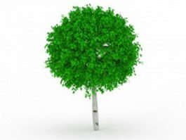 Topiary ball tree 3d model preview