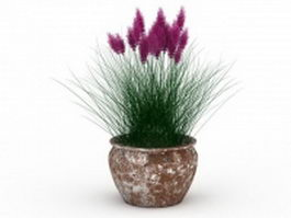 Potted plants reed 3d model preview