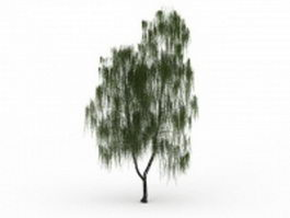 Drooping willow tree 3d preview